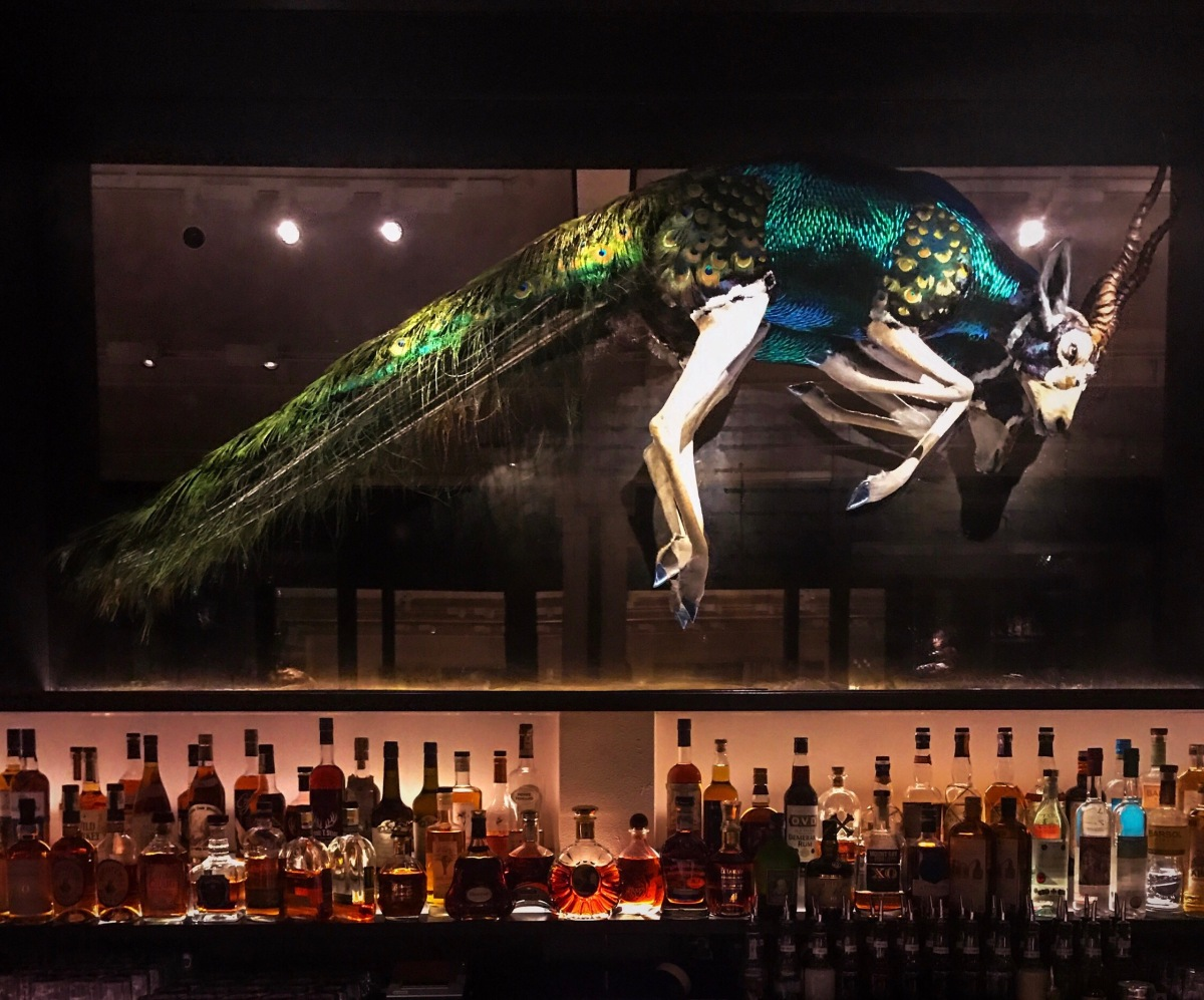 London Reviews: The Mandrake Hotel Bar