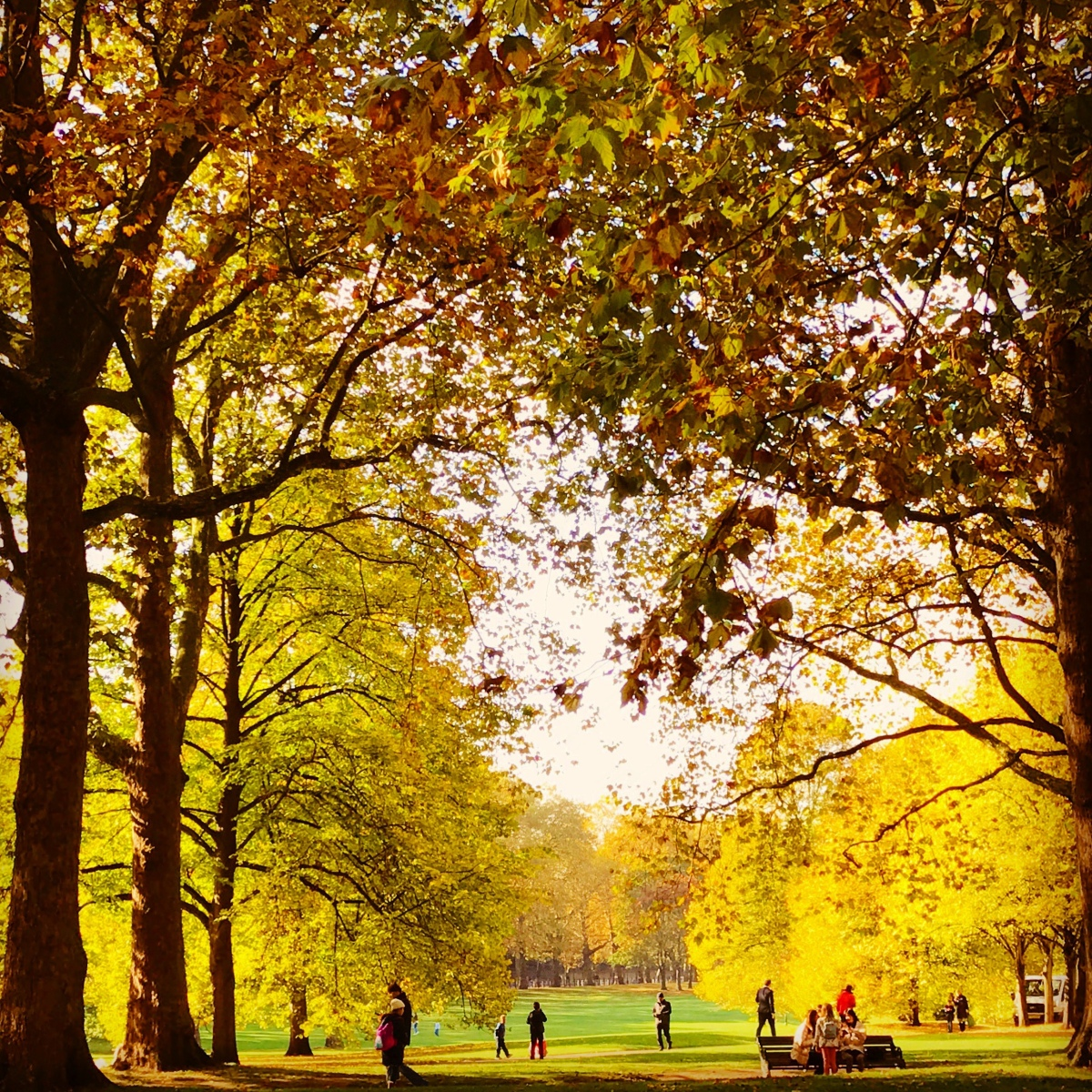 A Londoner's Guide to Autumn 2018
